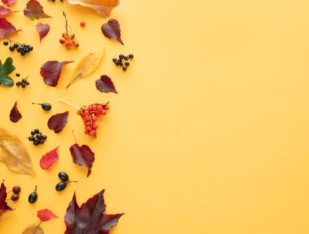 Composition of autumn leaves on yellow background. Copy space