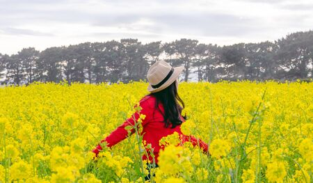 Woman in red sweater and hat in yellow flower field. Concept of spring