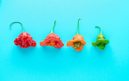 Colored peppers in a row on a blue background. Space for top and bottom copy. Foto de archivo - 140648815