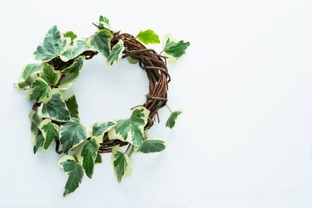 Ivy and rustic wood crown on a cream-coloured background. Space for copy on the right. Congratulations concept.