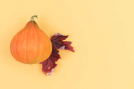 Creative autumn composition. Pumpkin and dried leaves on a two-color background.