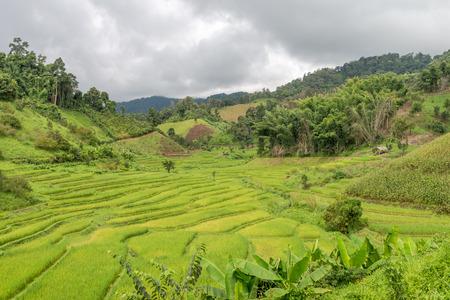 sep: Natural Mountain Huai Nam Khun Village Chiang Rai, Thailand Sep 2016