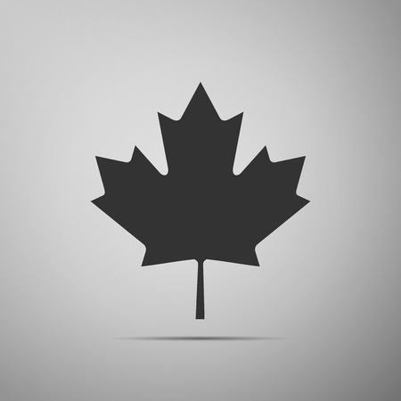 calgary: Canadian Maple Leaf icon on grey background. Adobe illustrator