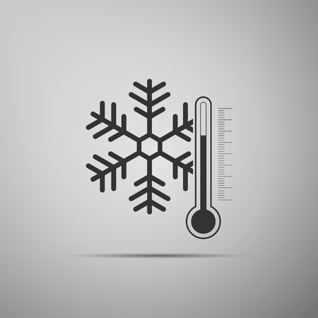 Thermometer with snowflake icon isolated on grey background Vector Illustration