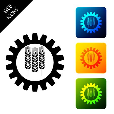 Wheat and gear icon isolated. Agriculture symbol with cereal grains and industrial gears. Industrial and agricultural. Biotechnology concept. Set icons colorful square buttons. Vector Illustration Ilustrace
