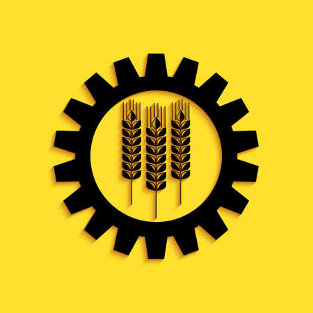 Black Wheat and gear icon isolated on yellow background. Agriculture symbol with cereal grains and industrial gears. Industrial and agricultural. Long shadow style. Vector 向量圖像
