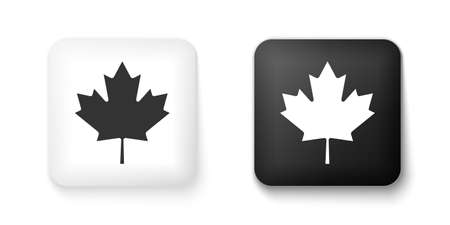 Black and white Canadian maple leaf icon isolated on white background. Canada symbol maple leaf. Square button. Vector