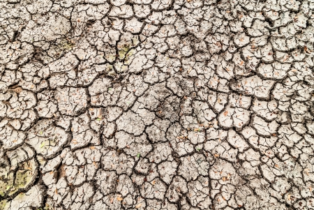 lack of water: The crack of a dry climate and lack of water.