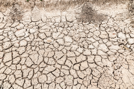 The crack of a dry climate and lack of water.