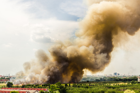Forest fires in the city, causing a large flame and smoke in the air is very hot days Firemen rush to help prevent the spread of fire to the village , In Thailand