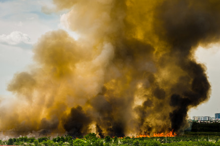 Forest fires in the city, causing a large flame and smoke in the air is very hot days  Firemen rush to help prevent the spread of fire to the village , In Thailand  photo