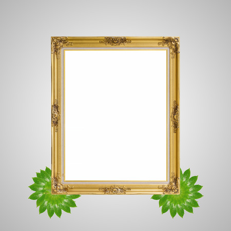 louise: Gold louise and leaves photo frame isolated white background Stock Photo