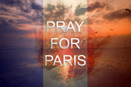 carnage: Pray for Paris 13 November 2015, The background is rose frozen and landscape nature with seagull sunset light