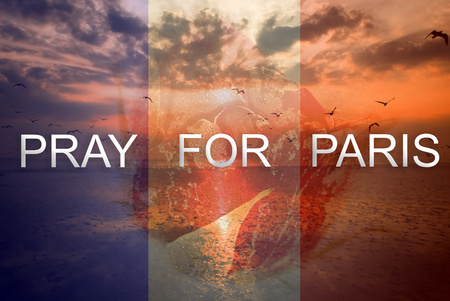 Pray for Paris 13 November 2015, The background is rose frozen and landscape nature with seagull sunset light