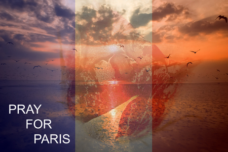 rampage: Pray for Paris 13 November 2015, The background is rose frozen and landscape nature with seagull sunset light