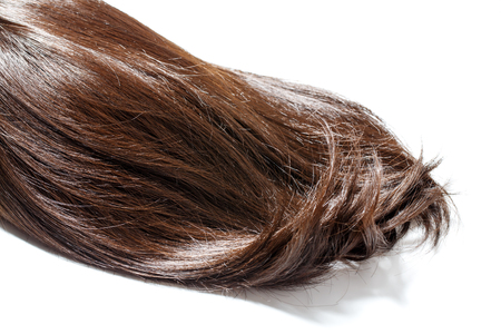 piece of brown hair on white isolated background Stock Photo