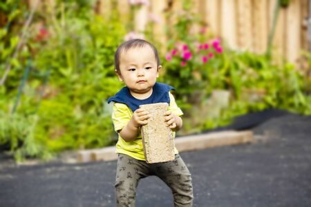 one year old baby boy carry heavy brick isolated on a garden background and copy space. transportation, moving, architecture concept.