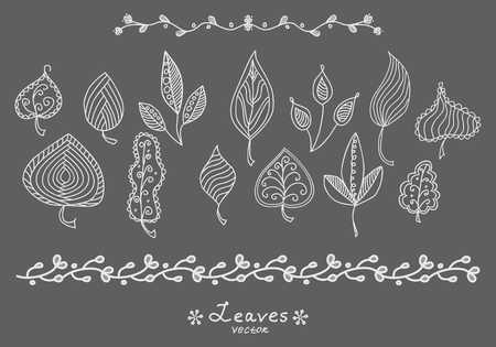 wedding heart: Set of doodle hand drawn leaves skeletons