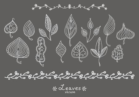 art vector: Set of doodle hand drawn leaves skeletons