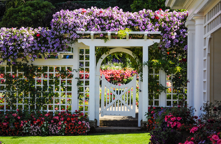 cottage: Botanical garden white fence with gate and blooming flowers
