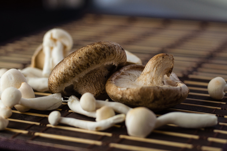 assorted: Close up of assorted Chinese mushrooms on a mat Stock Photo