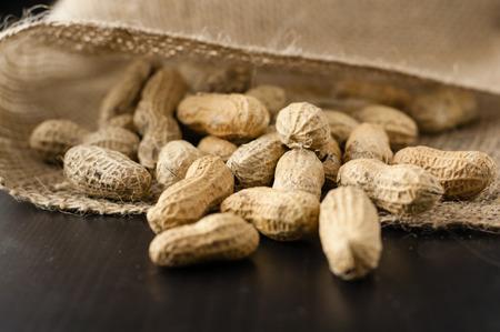 sacco juta: Arachidi in un sacco di iuta