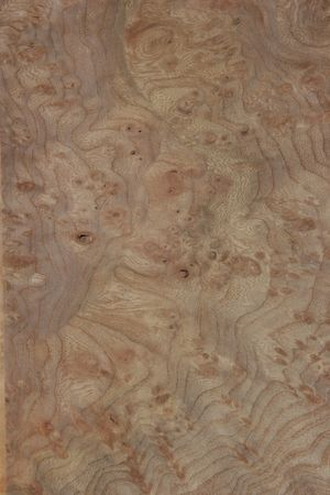 marquetry: rare wood texture