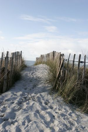 sand dune: it is fences on coastline