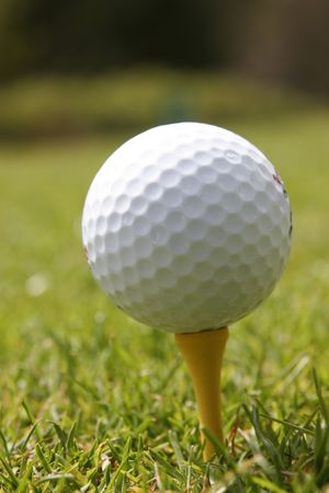 it is a golf ball on tee photo