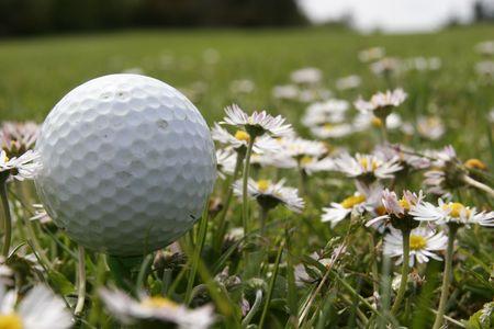 golf play  on a sunny day photo