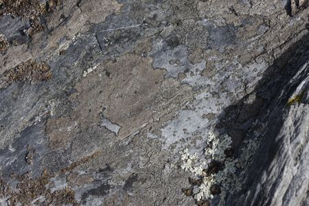 close up of a stone for texture Stock Photo - 5840535