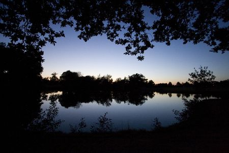 miror: reflection in a lake at evening