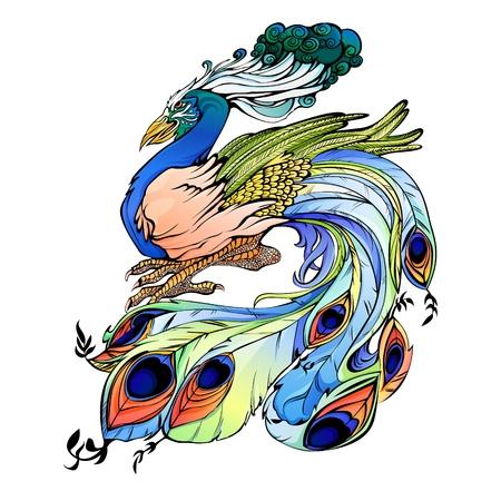 Gorgeous peacock  illustration. Bird symbol of India.