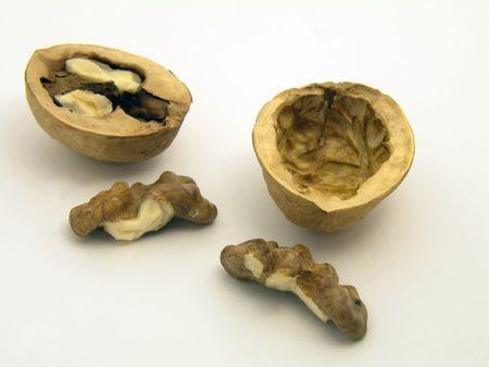 Nut Фото со стока