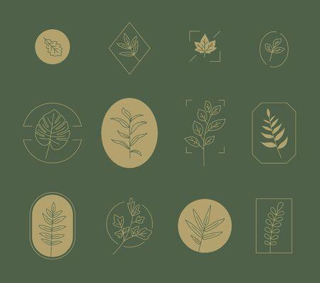 Monochromatic botanical icon collection set. flat design style minimal illustration. 일러스트