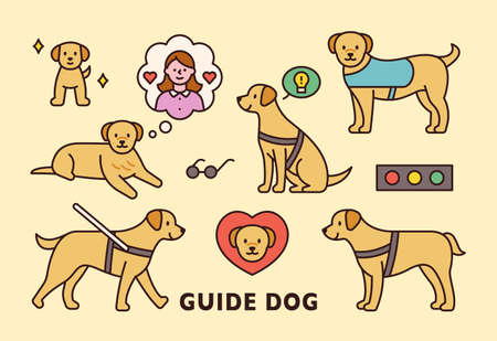 Cute blind guide dog icon. flat design style minimal vector illustration.