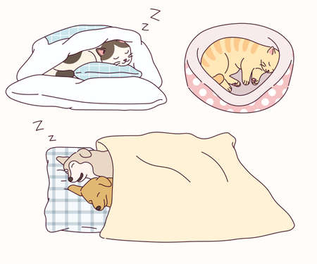 Dogs and cats sleep in cute poses. 스톡 콘텐츠 - 165796161