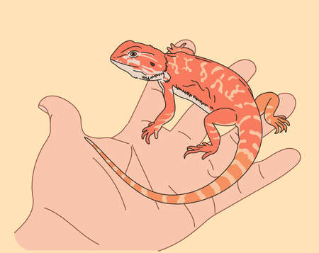 The little lizard on the hand. hand drawn style vector design illustrations. 일러스트