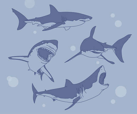 A collection of various actions of sharks. hand drawn style vector design illustrations. 일러스트