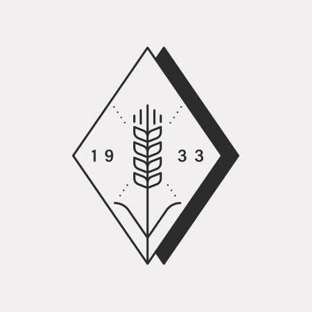 Barley or wheat crop illustration. Black color hipster design. 일러스트
