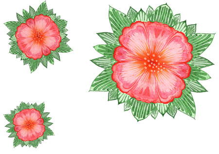 ornaments interlacing lines and exotic flowers