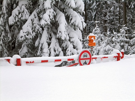 calamity: Snow calamity with snowy traffic signs and trees Stock Photo