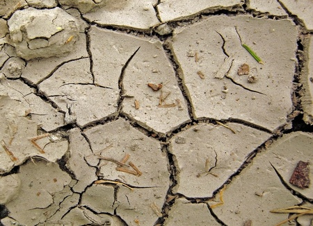 Very dry cracked soil with small stones Stock Photo - 13423580