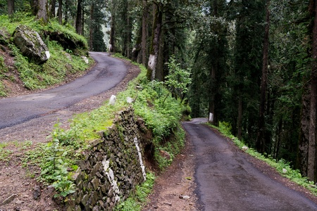 Twisty road through the forest to Hatu Peak in India photo