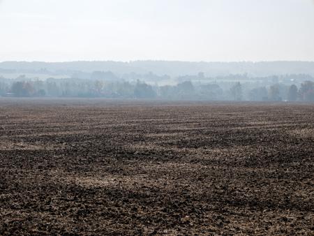 arbol de problemas: Campo de Brown en un smog aire