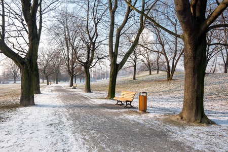 Relaxation atmosphere in the park Komenskeho sady in winter