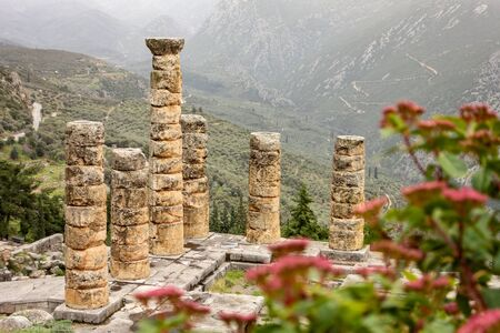 The ruin of the Temple Apollo in Delphi behind red plant whuch is out of focus for better depth effect of the photo Foto de archivo
