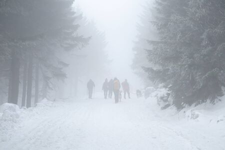 Active tourists hiking in a foggy winter weather through the forest in Beskydy Mountains, Czech Republic. Zdjęcie Seryjne