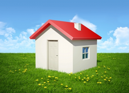 The house with a red roof costs in the field of a green grass