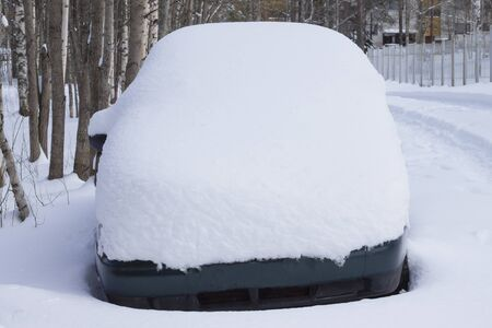 A car under the snow against the background of trees. Imagens